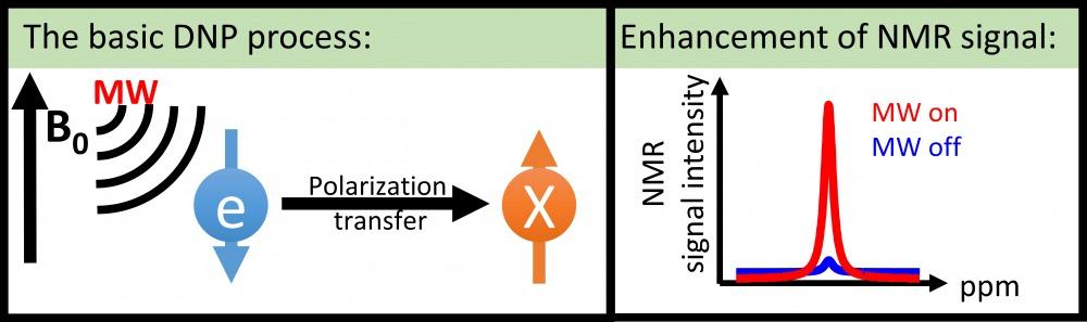 DNP_scheme